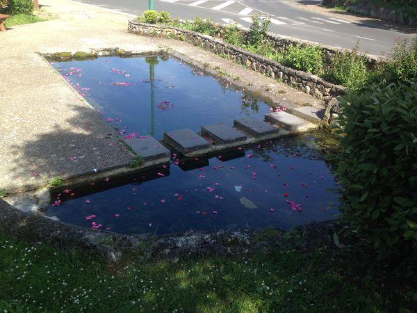 Le quizz eauvergnat : le résultat du 19 juin