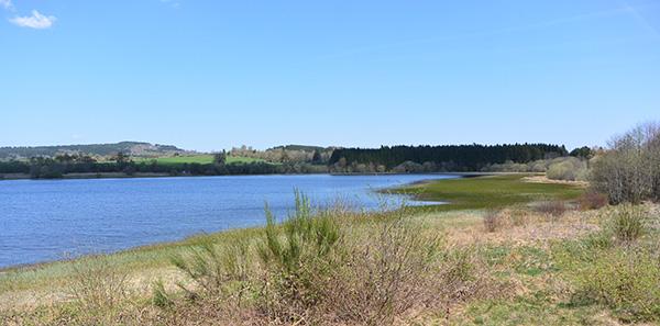L'étang Grand de Pulvérières